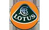 蓮花-Lotus